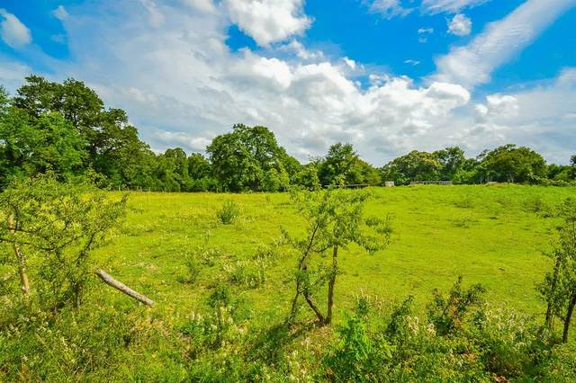 TBD Rs County Road 4220, Emory, TX 75440 (MLS #14377943) :: The Kimberly Davis Group