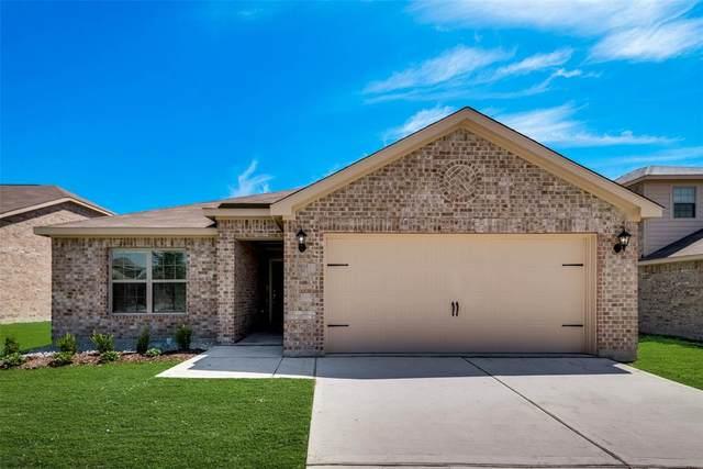3013 Trinchera Street, Forney, TX 75126 (MLS #14378346) :: The Kimberly Davis Group