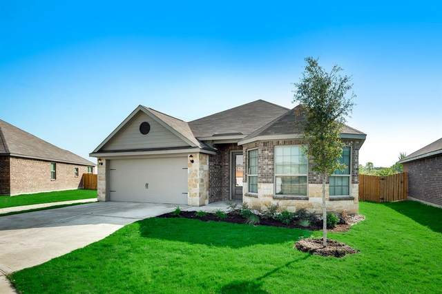 5301 Songbird Trail, Denton, TX 76207 (MLS #14378370) :: Baldree Home Team