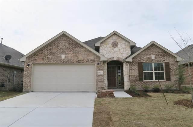 812 Kinghaven Drive, Little Elm, TX 75068 (MLS #14378389) :: Tenesha Lusk Realty Group