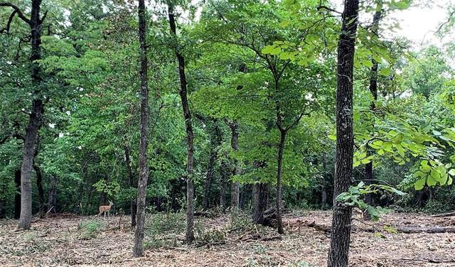 7350 Double Oaks Road, Athens, TX 75752 (MLS #14378819) :: The Kimberly Davis Group