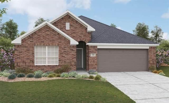 513 Saffron Street, Princeton, TX 75407 (MLS #14378833) :: The Kimberly Davis Group