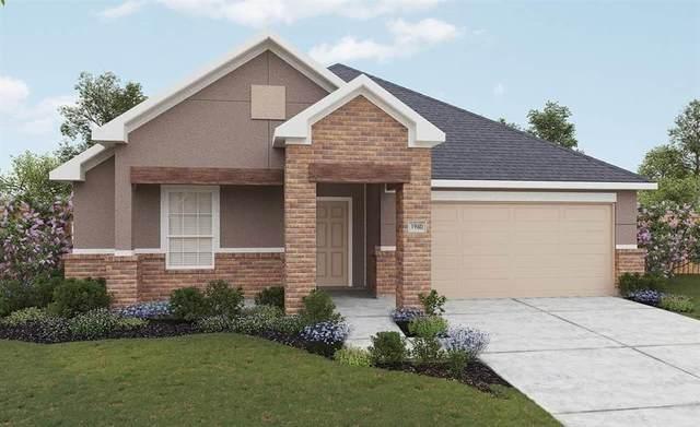 517 Saffron Street, Princeton, TX 75407 (MLS #14378910) :: The Kimberly Davis Group