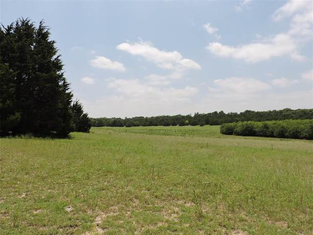 TBD N Lincoln Park Road, Van Alstyne, TX 75495 (MLS #14378970) :: All Cities USA Realty