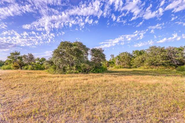 TBD-2 Spring Ranch Drive, Weatherford, TX 76088 (MLS #14379050) :: Premier Properties Group of Keller Williams Realty