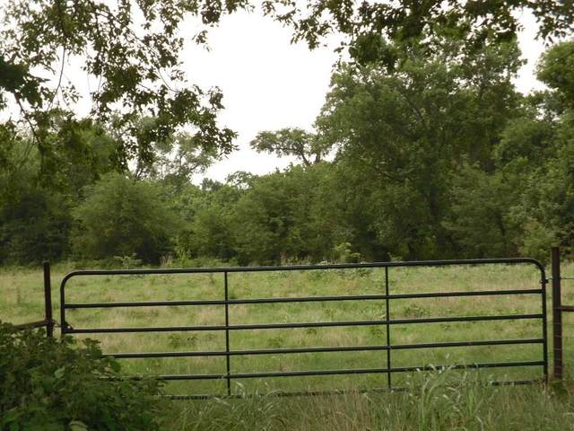 tbd SW Ncr 3160 Road, Dawson, TX 76639 (MLS #14379549) :: Frankie Arthur Real Estate