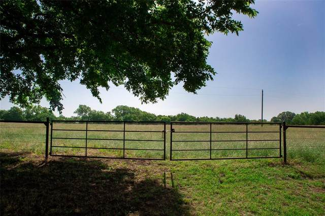 11.7AC County Road 507, Anna, TX 75409 (MLS #14380123) :: The Kimberly Davis Group