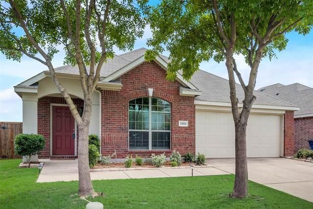 1201 Angelina Drive, Princeton, TX 75407 (MLS #14380348) :: The Kimberly Davis Group