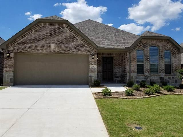 1404 Welch Drive, Princeton, TX 75407 (MLS #14380524) :: The Kimberly Davis Group