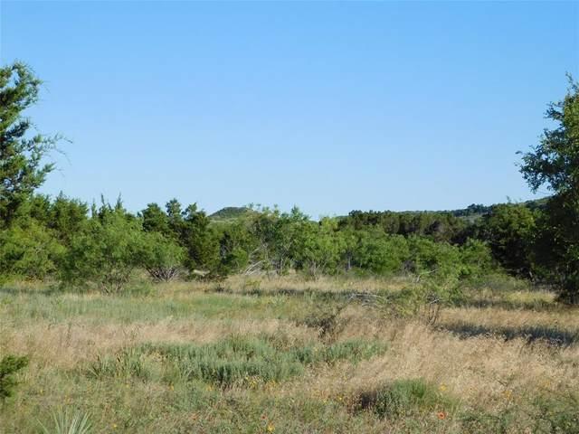 1053 Bluff Creek Drive, Strawn, TX 76475 (MLS #14380808) :: The Mauelshagen Group