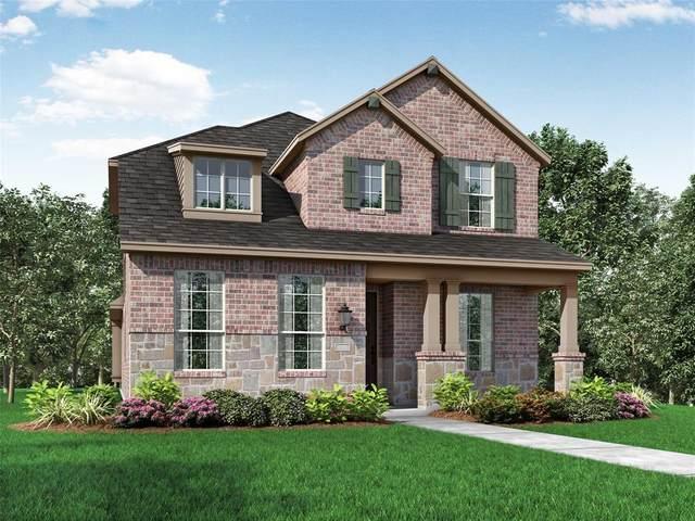 4433 English Maple Drive, Arlington, TX 76005 (MLS #14380871) :: Tenesha Lusk Realty Group