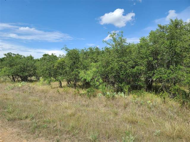 TBD Woods Landing Drive, Brownwood, TX 76801 (MLS #14381367) :: Feller Realty