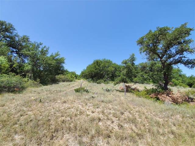 0.711 Fm 2632 N, Brownwood, TX 76801 (MLS #14381605) :: The Hornburg Real Estate Group