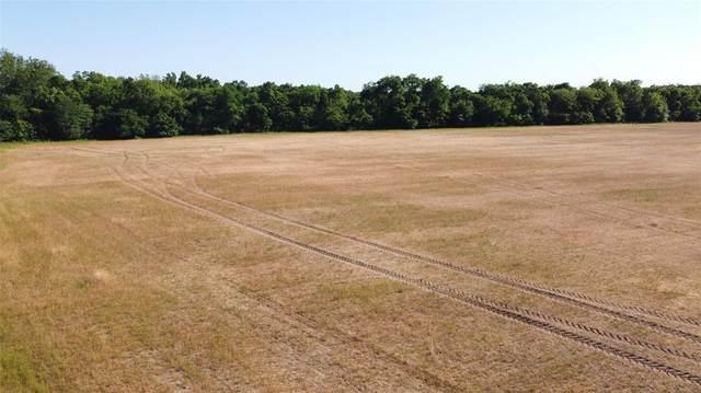Lot 7 Fm 36, Farmersville, TX 75442 (MLS #14382388) :: The Kimberly Davis Group