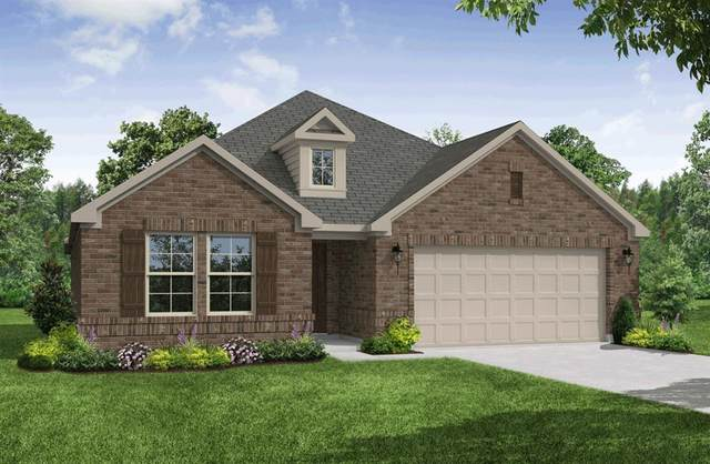 126 Nix Drive, Hickory Creek, TX 75065 (MLS #14382796) :: Baldree Home Team