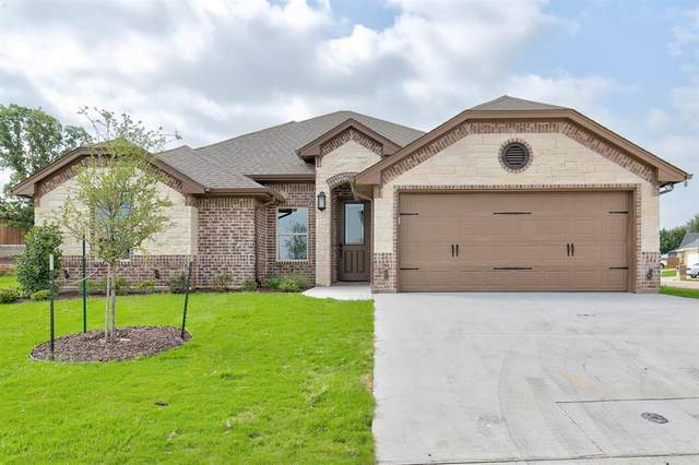 225 Jacinth Lane, Granbury, TX 76049 (MLS #14382962) :: The Mauelshagen Group