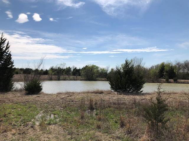 TBD County Rd 627, Blue Ridge, TX 75424 (MLS #14383458) :: The Kimberly Davis Group