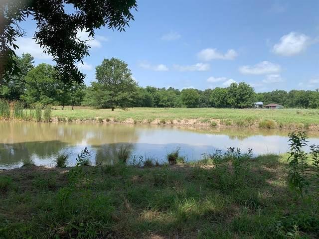 TBD Cr 2020, Klondike, TX 75448 (MLS #14384117) :: Frankie Arthur Real Estate