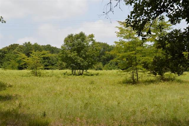 TBD County Rd 3514, Lone Oak, TX 75453 (MLS #14384387) :: Real Estate By Design