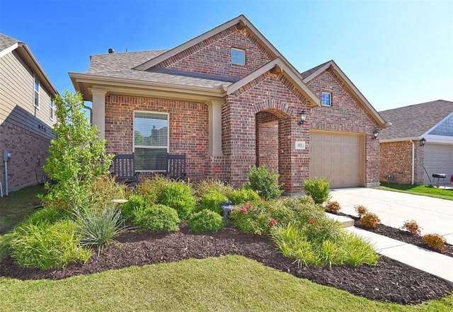1833 Turnstone Trail, Argyle, TX 76226 (MLS #14384528) :: The Mauelshagen Group