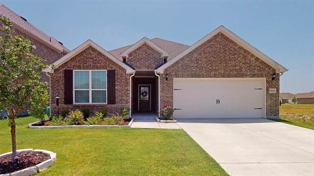 2904 Ash Avenue, Melissa, TX 75454 (MLS #14384916) :: Team Tiller
