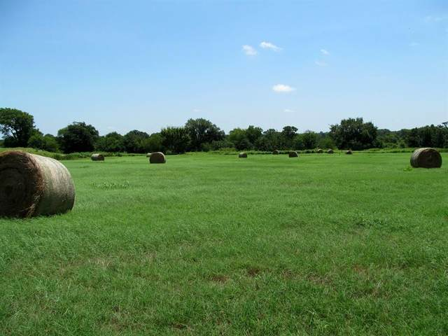 0000 Farm Road 3105, Pickton, TX 75471 (MLS #14385143) :: All Cities USA Realty