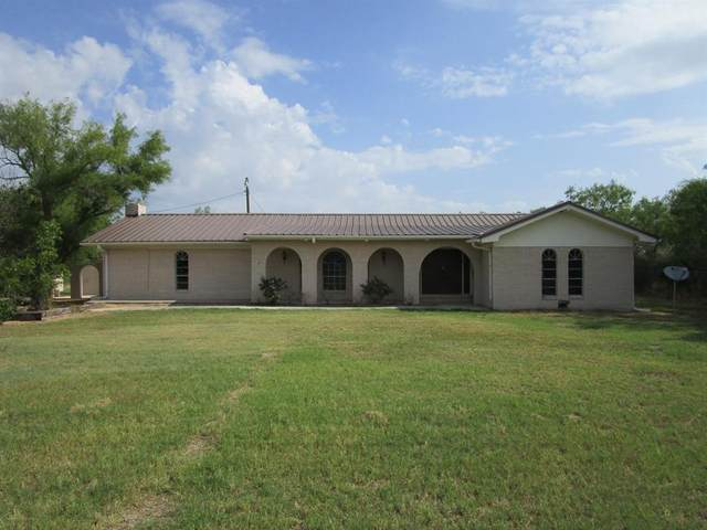 4590 County Rd 136, Brownwood, TX 76801 (MLS #14385486) :: The Chad Smith Team