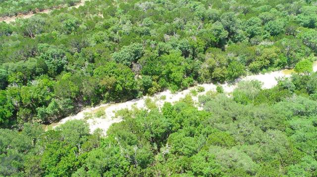 TBD Butterfield Trail Road, Tuscola, TX 79562 (MLS #14385933) :: The Daniel Team