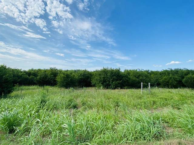 14887 County Road 1100, Blue Ridge, TX 75424 (MLS #14386070) :: RE/MAX Pinnacle Group REALTORS
