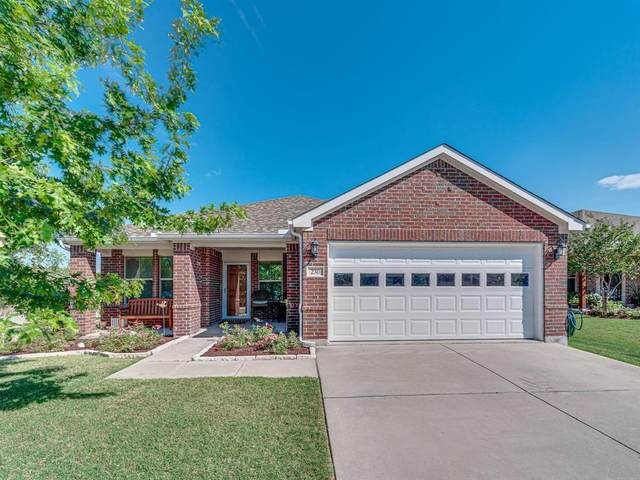 230 Bear Trail, Waxahachie, TX 75165 (MLS #14386137) :: The Chad Smith Team