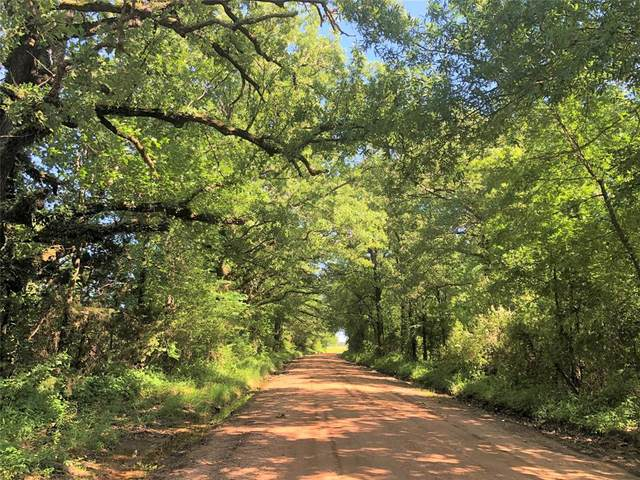 TBD Cr 4306, De Kalb, TX 75559 (MLS #14386551) :: The Kimberly Davis Group