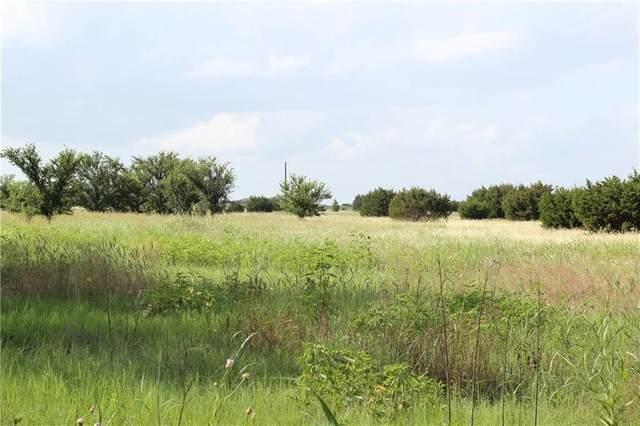 TBD Farm Road 219, Dublin, TX 76446 (MLS #14386561) :: The Chad Smith Team