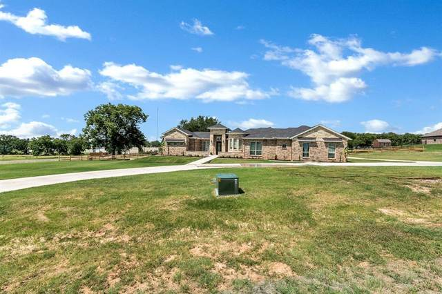 100 Maverick Court, Granbury, TX 76049 (MLS #14386820) :: The Kimberly Davis Group