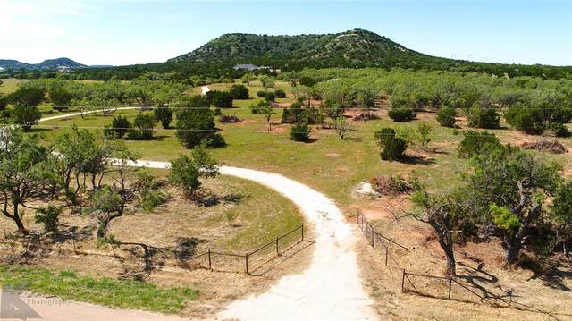 2442 County Road 162, Ovalo, TX 79541 (MLS #14386942) :: The Hornburg Real Estate Group