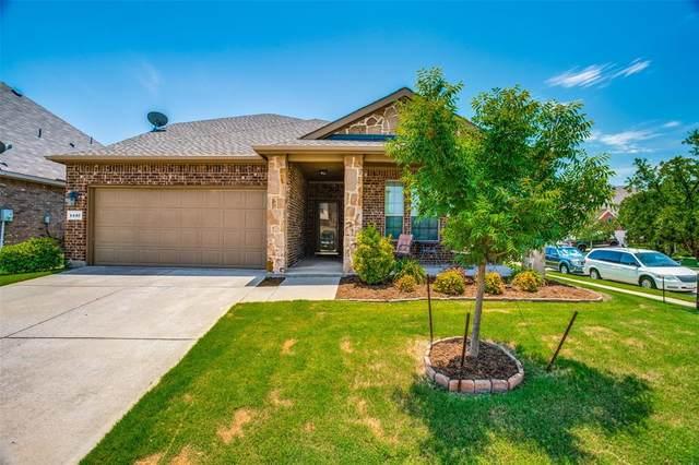 1437 Red Drive, Little Elm, TX 75068 (MLS #14387169) :: Tenesha Lusk Realty Group
