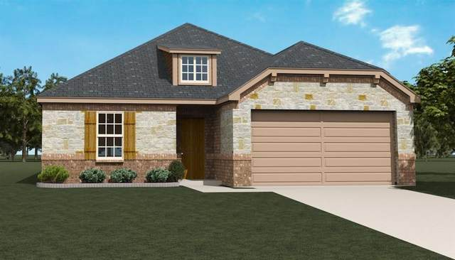 3010 Pronghorn Drive, Melissa, TX 75454 (MLS #14387589) :: All Cities USA Realty