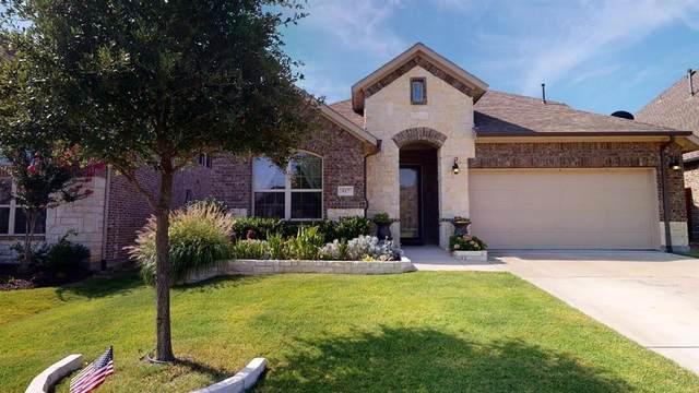917 Llano Falls Drive, Mckinney, TX 75071 (MLS #14387887) :: The Kimberly Davis Group