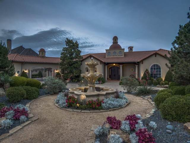 5564 Monterey Drive, Frisco, TX 75034 (MLS #14388482) :: Frankie Arthur Real Estate
