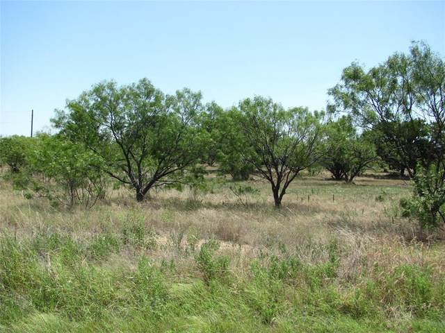 Lot 502 Feather Bay Drive, Brownwood, TX 76801 (MLS #14388653) :: The Daniel Team