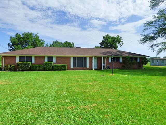 957 County Road 3150, Cookville, TX 75455 (MLS #14390586) :: All Cities USA Realty