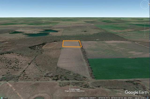 10 Acre County Rd 3015 Es, Cooper, TX 75432 (MLS #14392341) :: Maegan Brest | Keller Williams Realty