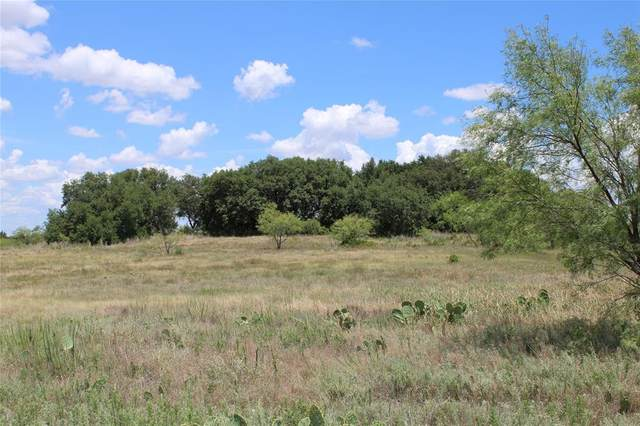 tbd County Rd 419, Comanche, TX 76442 (MLS #14393073) :: Potts Realty Group