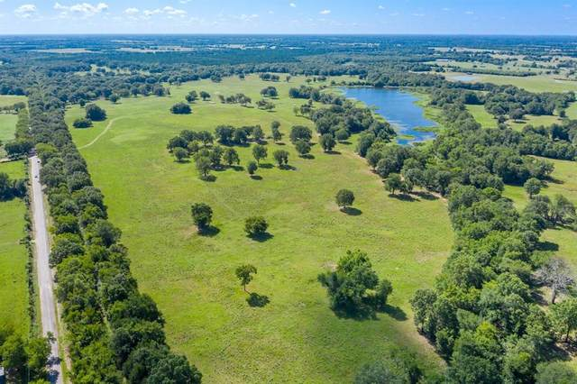 00 Cr 2110, Bagwell, TX 75412 (MLS #14393450) :: The Mauelshagen Group