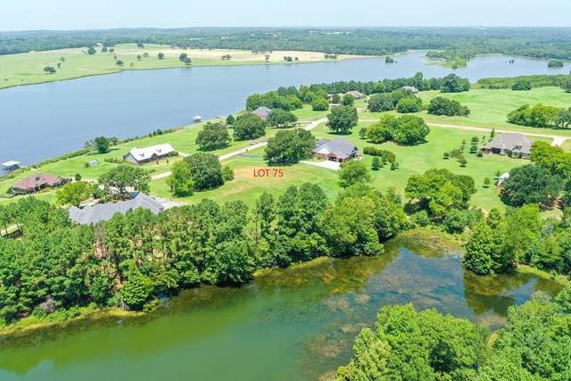 00 Shore Crest Way, Athens, TX 75752 (MLS #14393578) :: Team Hodnett