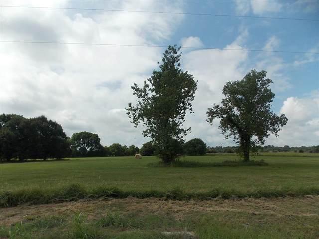 13014 E State Hwy 31, Kerens, TX 75144 (MLS #14393786) :: Trinity Premier Properties