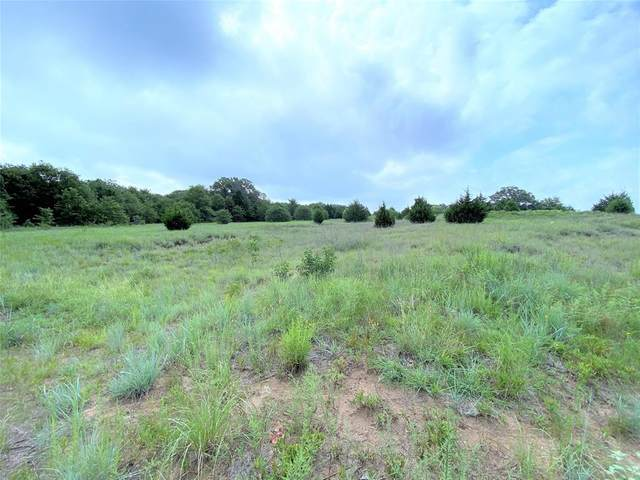 Tr 2 Hwy 287 Access Road, Bowie, TX 76230 (MLS #14396229) :: The Chad Smith Team