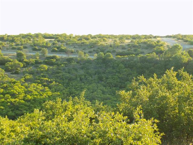 0 Baltrusol Drive, Possum Kingdom Lake, TX 76449 (MLS #14397141) :: The Daniel Team