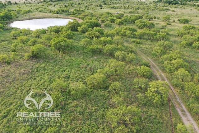 NA St Hwy 199 S, Jacksboro, TX 76458 (MLS #14397180) :: The Hornburg Real Estate Group