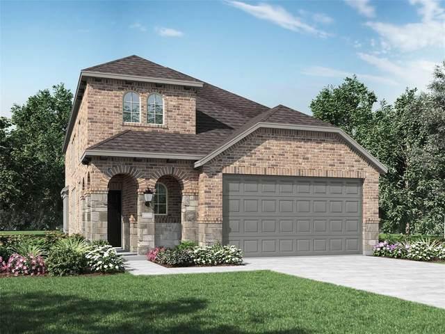 3911 Rochelle Lane, Heartland, TX 75126 (MLS #14398677) :: The Heyl Group at Keller Williams