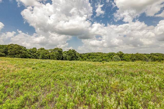 3907 N Fm 51, Weatherford, TX 76085 (MLS #14399596) :: EXIT Realty Elite